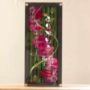 boxflower-wa-katori