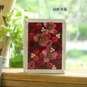 boxflower-bloom